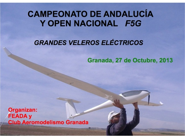 cartelF5GGranada2013-1